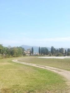 In lontananza la Fattoria Medicea, zona protetta e privata